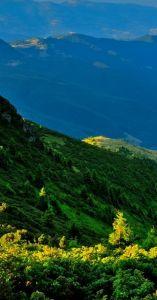 serban_ridge